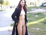 compilation of different public flashing scenes