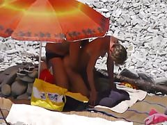 Dojrzała psia plaża
