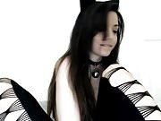 Cute kitten plays with holes on cam