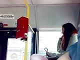Flash Verga bus cum
