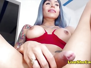 Big Tits Shemale Dailyts Shemale Big Cock Shemale video: Gorgeous Colombian shemale online