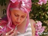 Yanks Zahra Stardust Blossoms In The Garden