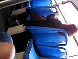 Flash Bus 251