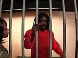 Asian guy eletrocutes prisoner, makes him fuck black guard