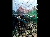 Black--Widow Slideshow-Underwater Art Anatoly Beloshchin