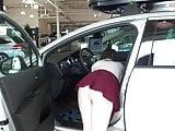 Exhibits in car dealership 2
