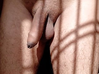 My half erected small Cock