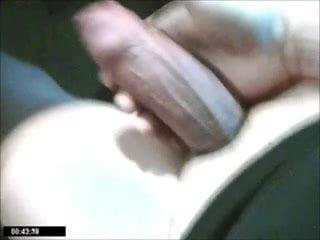 Potno hamster Free Porn