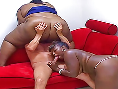 heavyweight black bbw's suck on white cockPorn Videos
